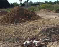 Abbandono incontrollato di rifiuti speciali su fondo proprio